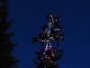small-lit-tree